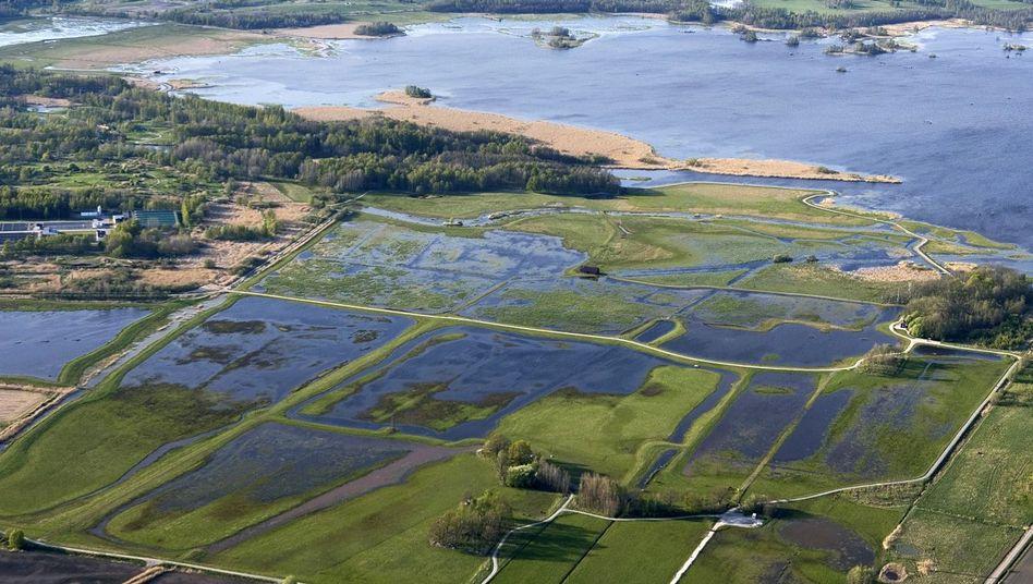 Teil des Naturschutzgebietes Oset-Rynningeviken in Schweden