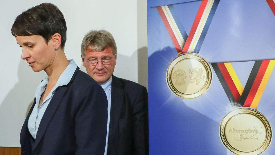 AfD-Chefs Frauke Petry und Jörg Meuthen