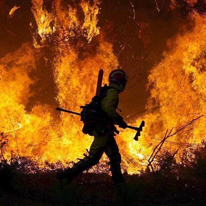 Waldbrand in Portugal: Dramatische Folge des Klimawandels?