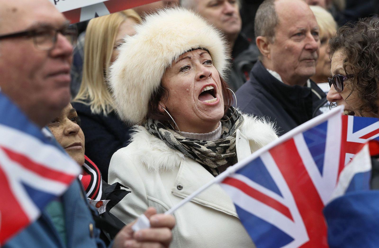 Brexit Fans Hammond London