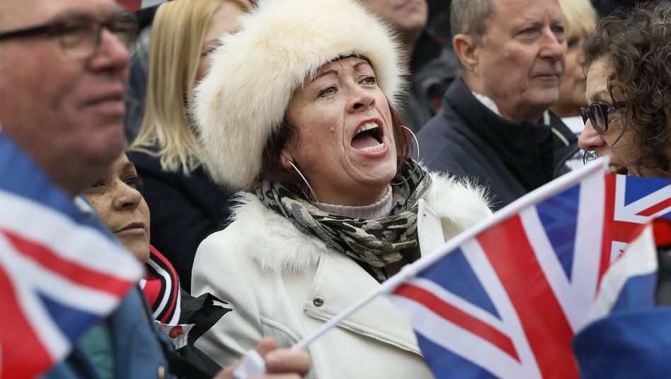Pro-Brexit-Demonstranten