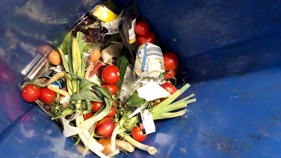 Weggeworfene Lebensmittel: Dass ihre Entnahme aus dem Müll verboten ist, passt in das Szenario der größtmöglichen Einschüchterung