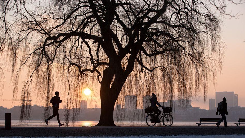 Joggen, Fahrradfahren, Spazierengehen: Bei Darmkrebs und Brustkrebs gilt als sicher, dass Bewegung das Risiko senkt
