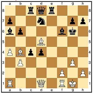 Zug 20, schwarz: ...Kg6 Schlecht ist 20...Te6, denn nach 21.Dh5+ verliert Schwarz Material, z.B.: 21...g6 22.Dxh7+ Lg7 23.Lxe6+ Kxe6 24.Dxg6+ Weiß steht auf Gewinn.
