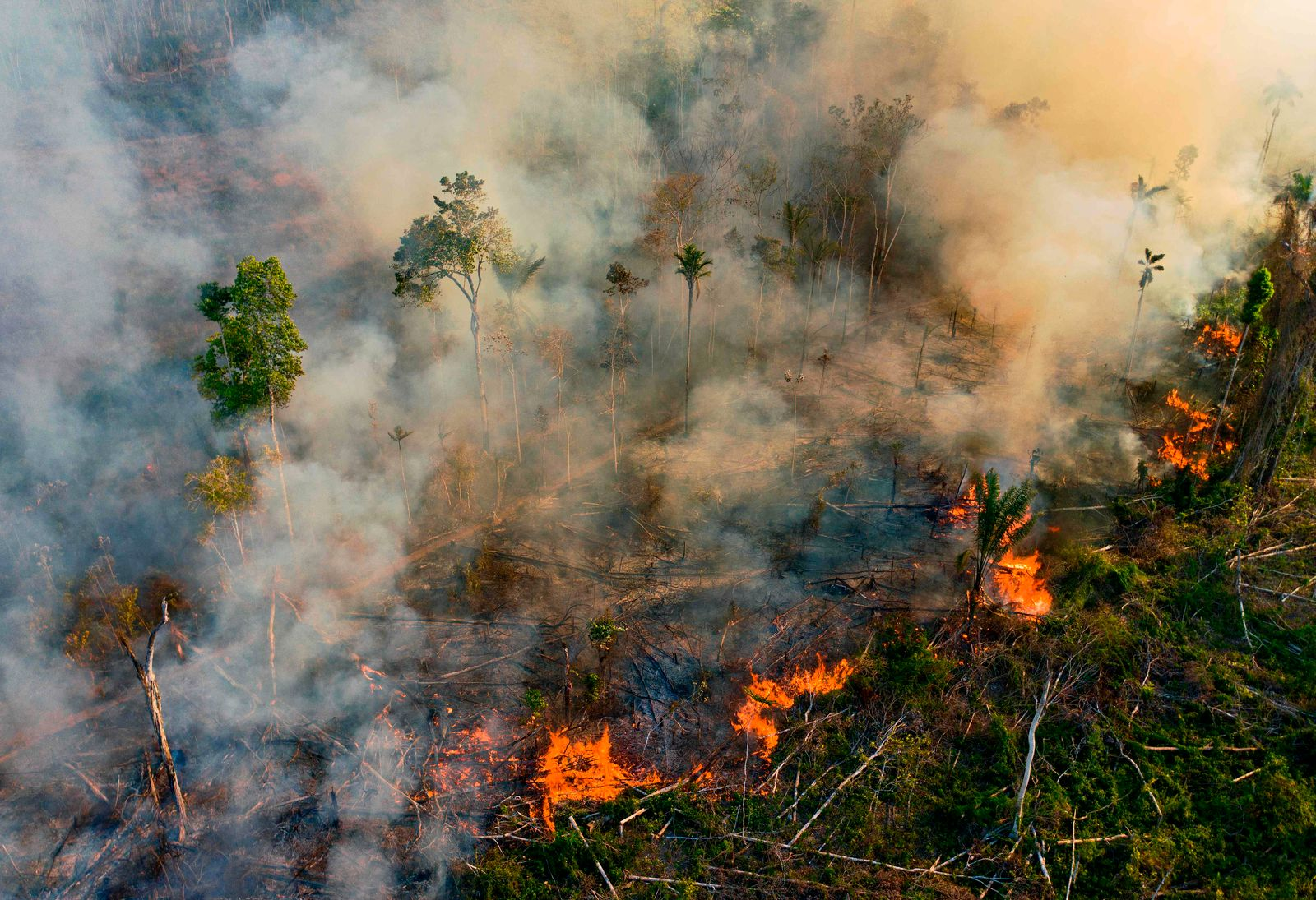 FILES-BRAZIL-AMAZON-FIRES