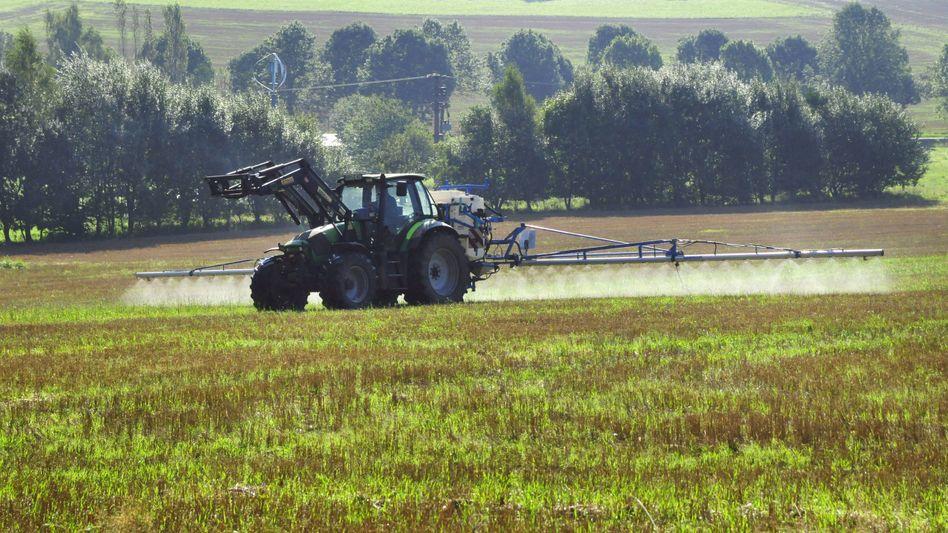Glyphosateinsatz auf einem Feld in Rheinland-Pfalz