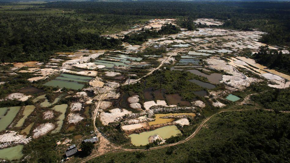 Illegale Goldmine im brasilianischen Urwald: Zerstörung nimmt immer größere Ausmaße an