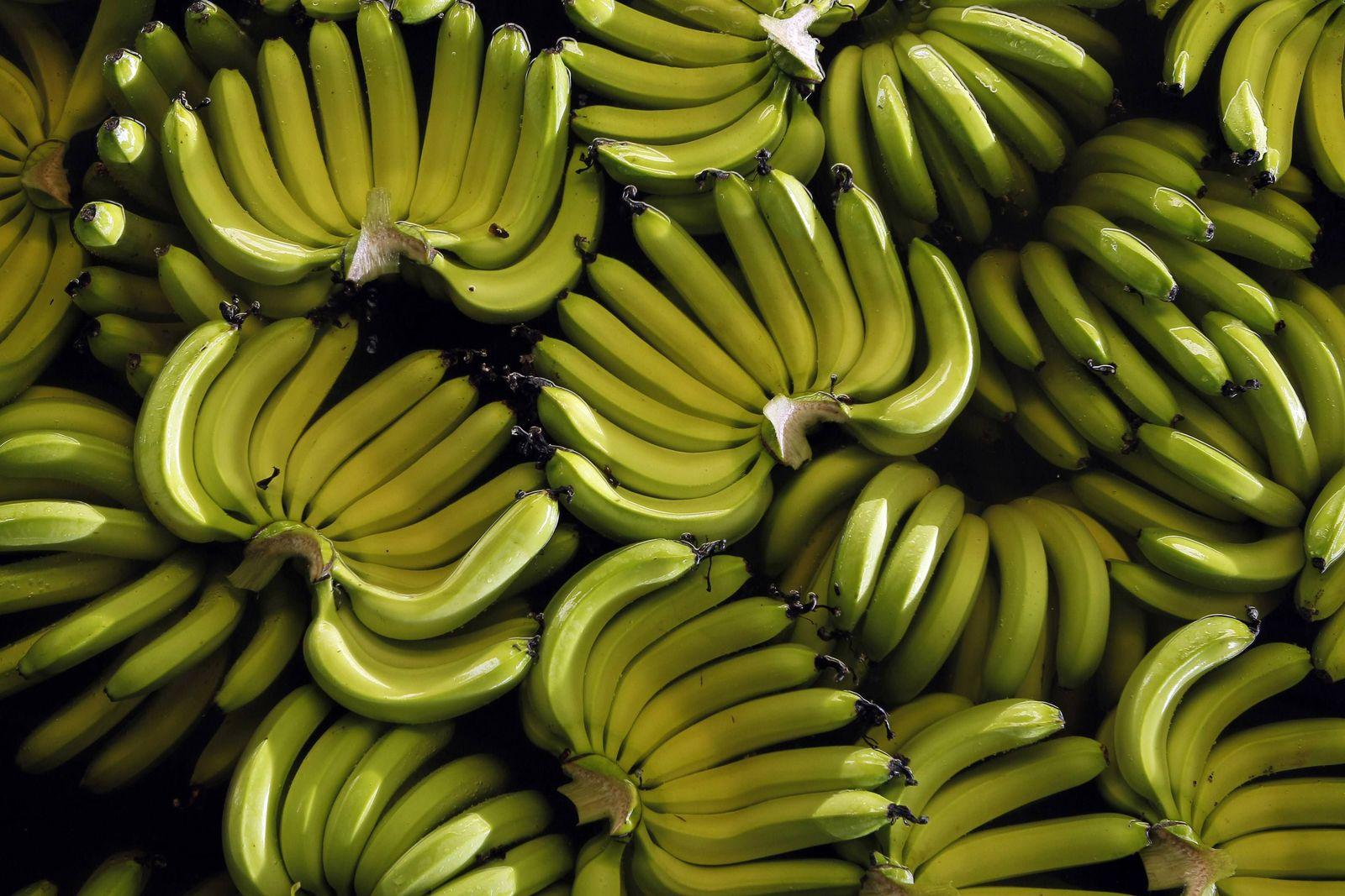 Obst & Gemüse/ Bananen