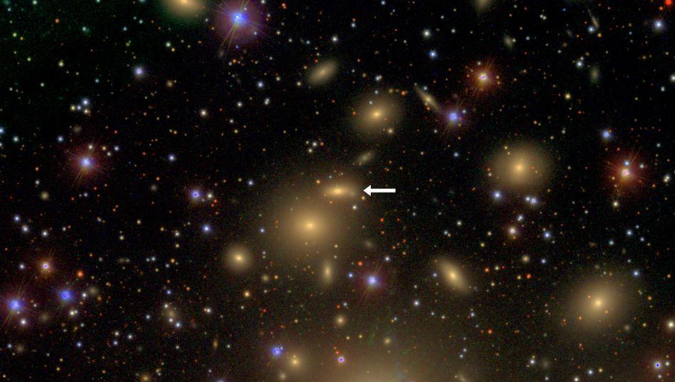 Galaxie NGC 1277: Ihr Schwarzes Loch ist so schwer wie 17 Milliarden Sonnenmassen