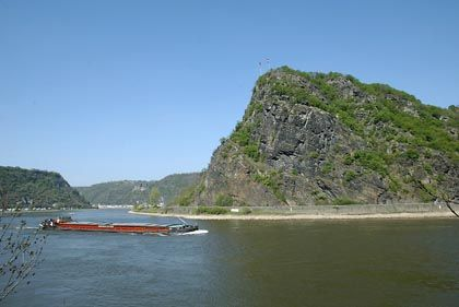 At the surface, the Rhine River can be beautiful. Below, salmon have a tough time surviving.