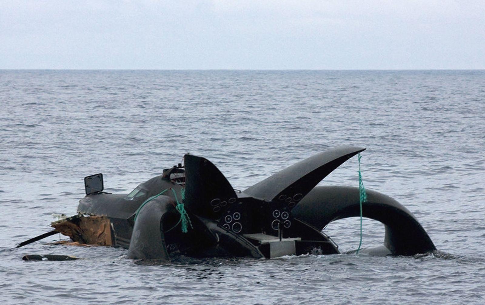 Sea Shepherd / Walfänger / Ady Gil