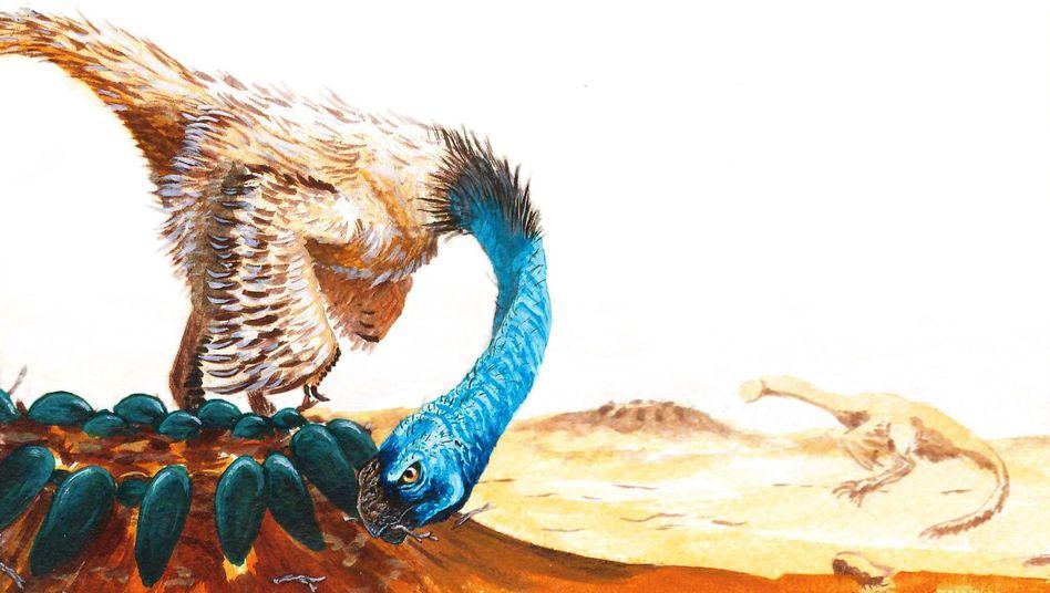 """Oviraptor: Der Name """"Eierdieb"""" enthält ein uraltes Missverständnis - diese Theropoden betrieben Brutpflege am offenen Nest und hatten wohl Eier, die so bunt waren wie die von Vögeln"""