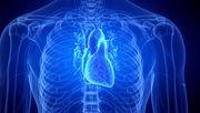 »Sie spüren das Herz nicht und trainieren einfach weiter«
