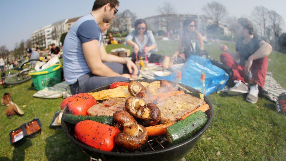 Freunde beim Grillen in Hamburg: Im Sommer ziehen häufig Nebelschwaden über Deutschlands Grillwiesen