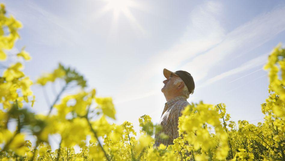 Gesicht in die Sonne: Der Körper kann Vitamin D in der Haut selbst bilden - jedoch nur mithilfe der Sonnenstrahlung