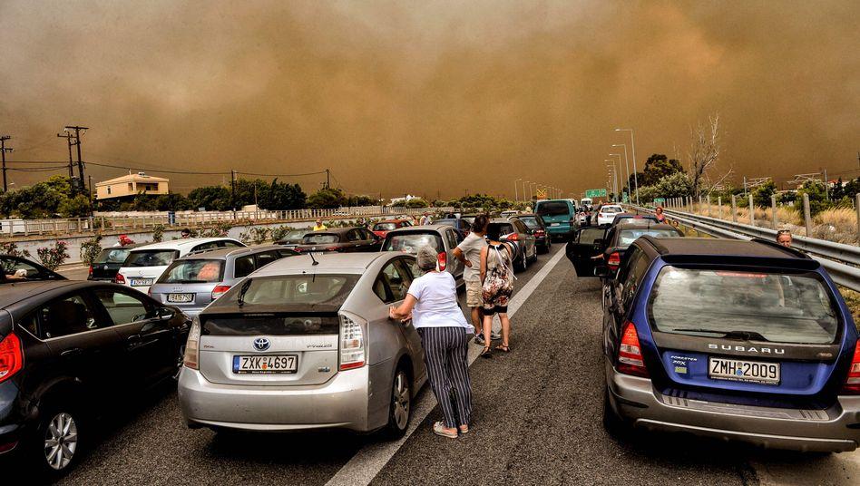 Waldbrand bei Kineta nahe Athen