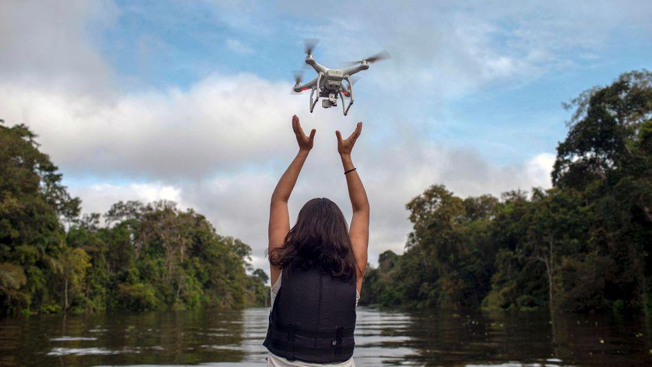 Luftaufnahmen und KI-Software helfen Forschern Waldschäden oder Tierpopulationen zu kartieren – und besser zu schützen