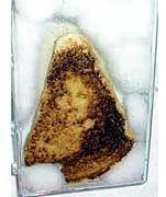 Der Toast des Anstoßes: Ist das die Jungfrau Maria, die man dort erkennt?