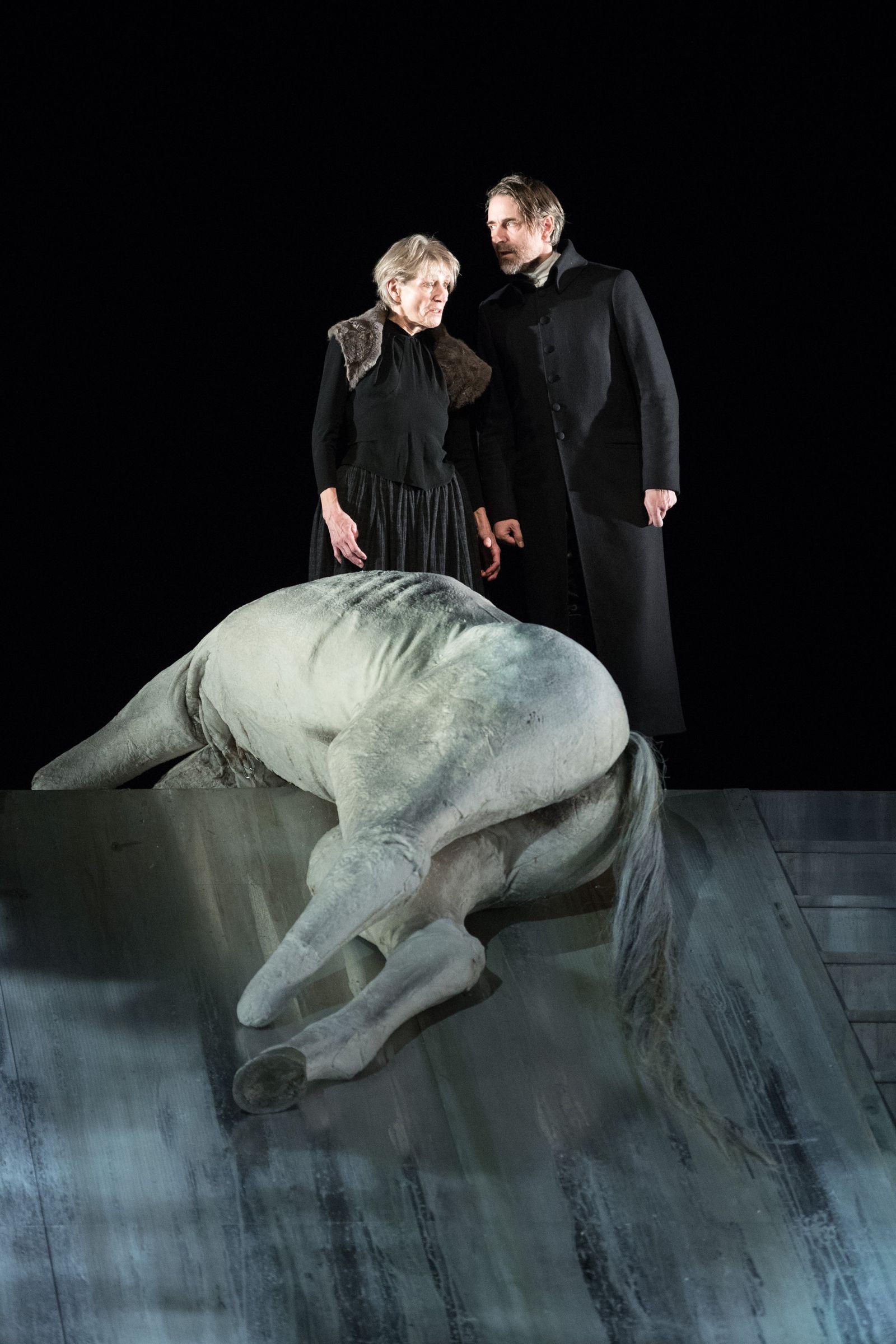 Theater/ Der Schimmelreiter