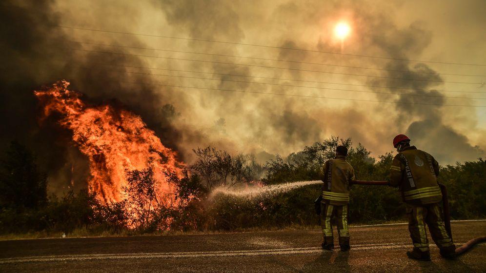 Feuerwehrleute kämpfen gegen die Flammen: Mindestens acht Menschen sind bisher bei den Waldbränden gestorben