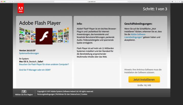 Update-Seite für den Adobe Flash Player