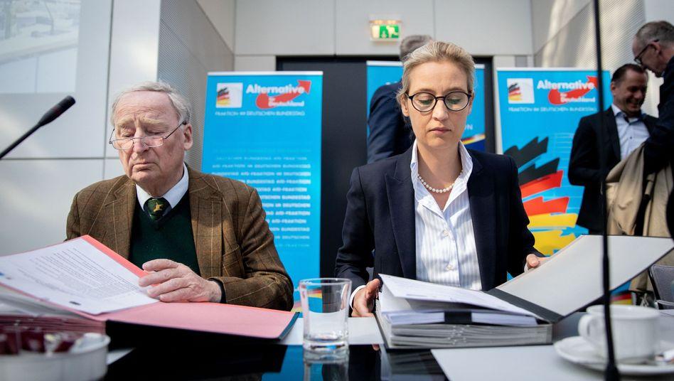 AfD-Fraktionschefs Alexander Gauland und Alice Weidel
