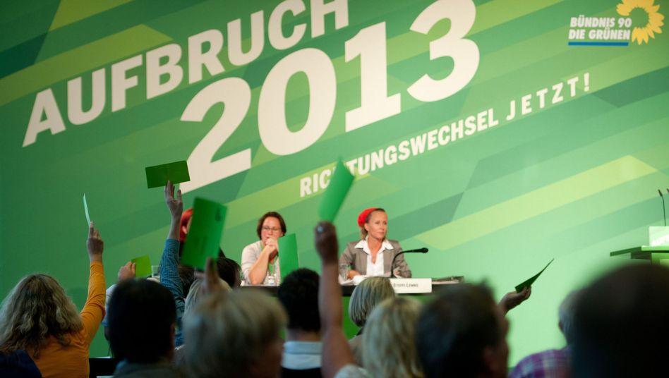 Kleiner Parteitag der Grünen: Mitglieder bestimmen Spitzen-Duo
