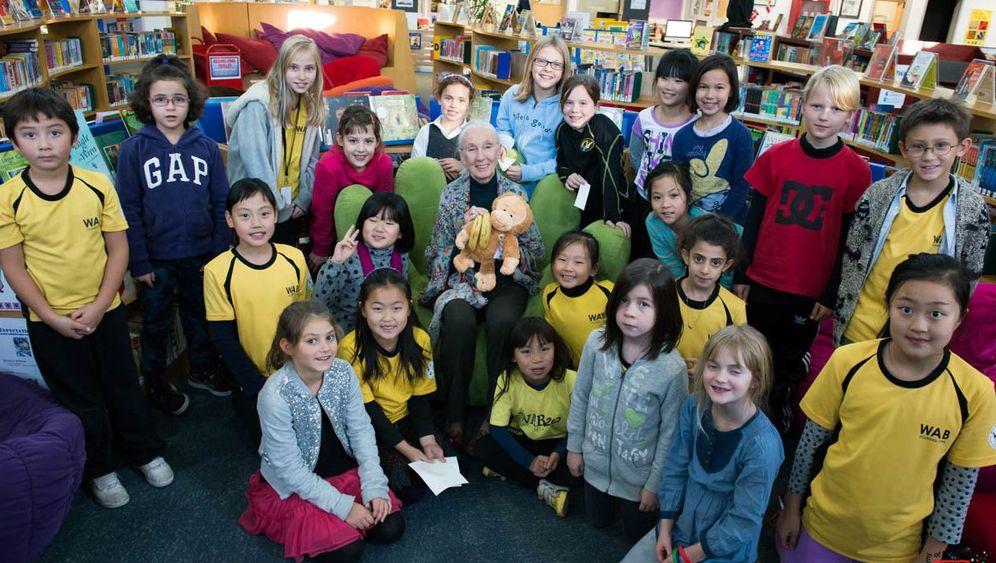 Jane Goodall in China: Naturschutz im Reich des Smogs