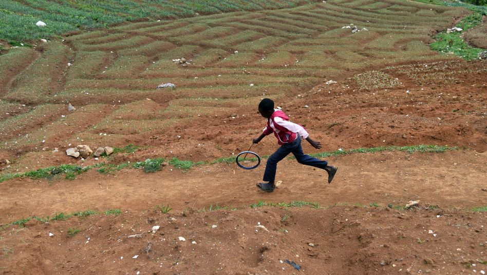 Acker in Haiti: Nährstoffarmer Boden aufgrund falscher Landwirtschaft