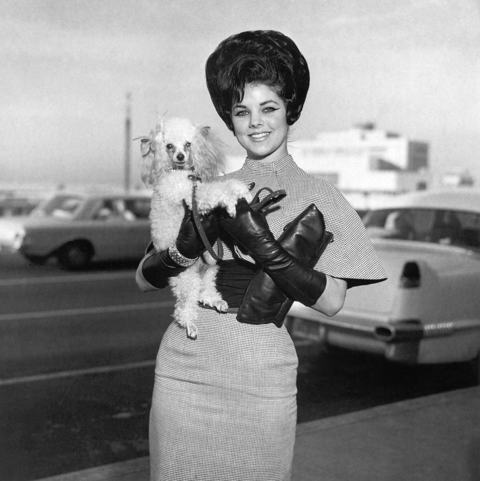 Rock and roll singer Elvis Presley's wife Priscilla Beaulieu Presley