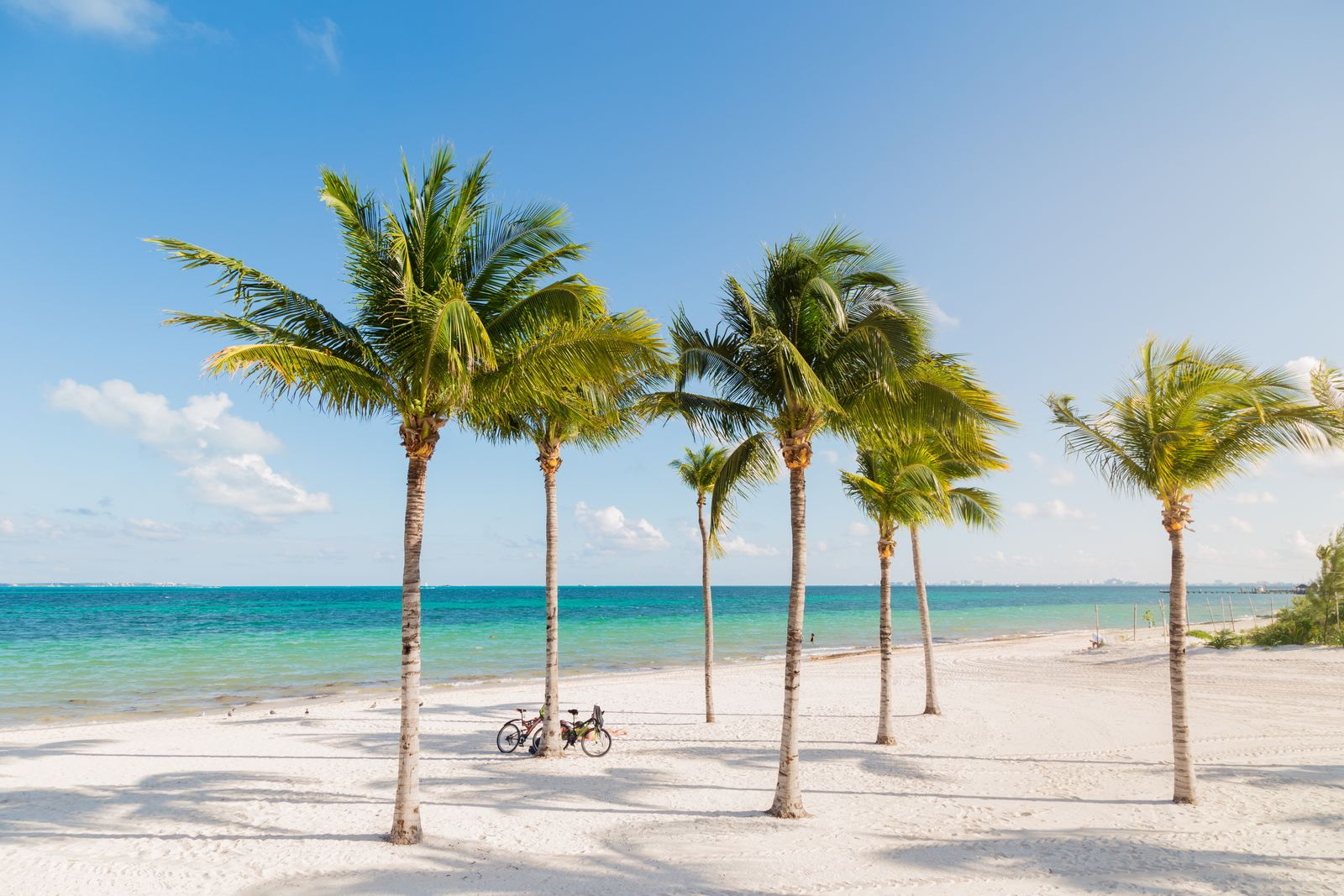 White sand beach in Cancun, Mexico, with palm trees with bicyles leaning up against them.