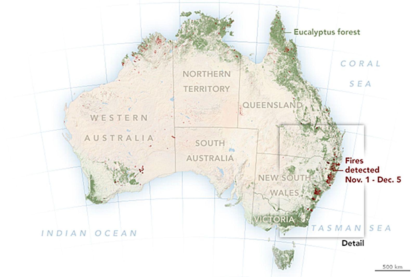 EINMALIGE VERWENDUNG Waldbrände/ Australien