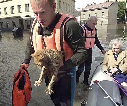 In Prag musste Anwohner und Tiere evakuiert werden - die Retter kamen im Taucheranzug