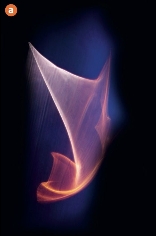 EINMALIGE VERWENDUNG DOCMA Koop/ Doppelbelichtungen