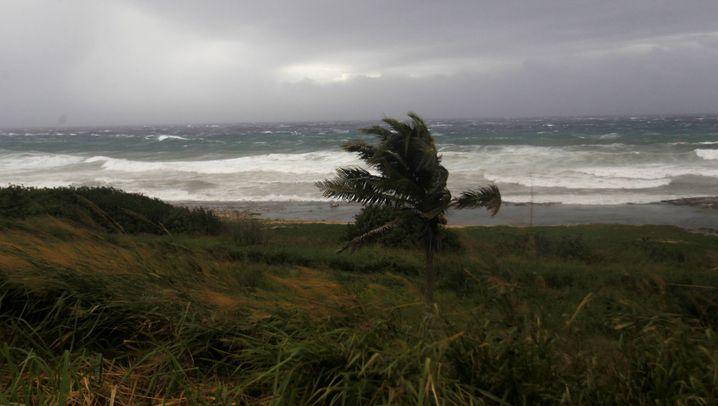 """Hurrikan """"Irma"""": Den Sturm vor Augen"""