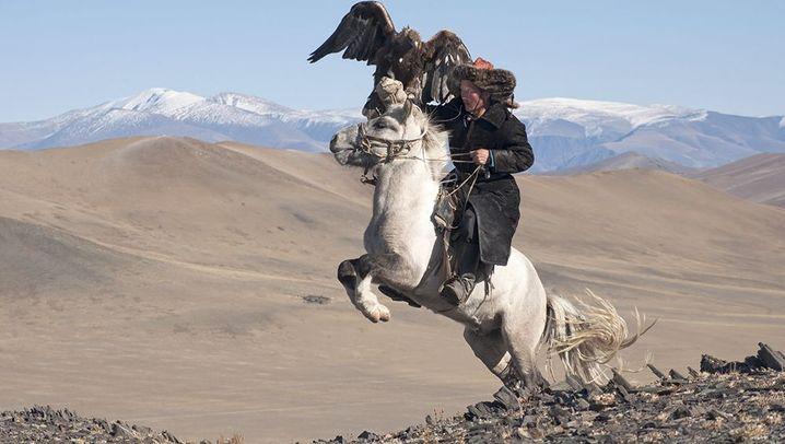 Mongolische Nomaden: Präsenz der Natur