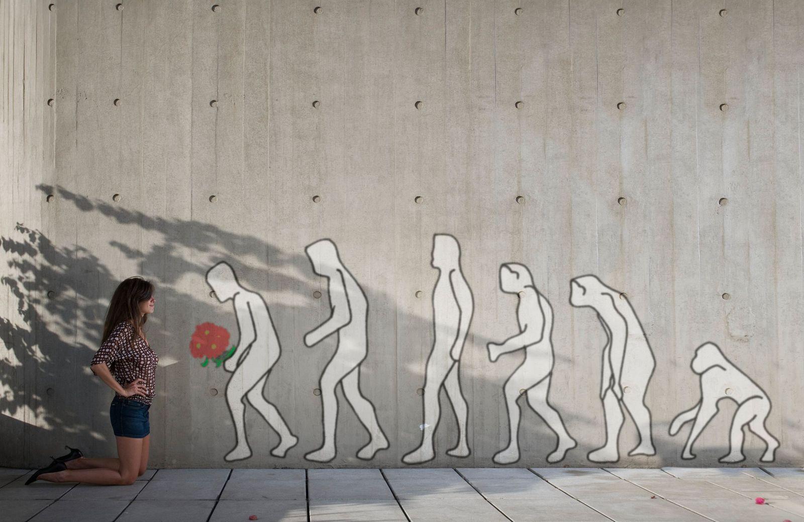 NICHT MEHR VERWENDEN! - SYMBOLBILD Evolution
