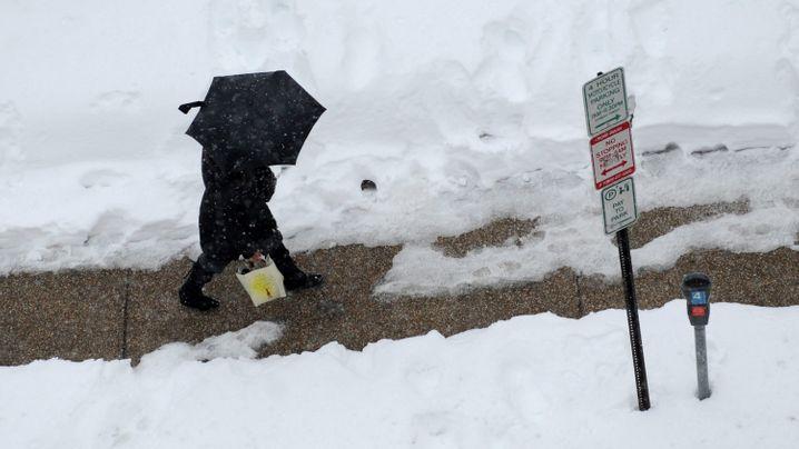 Washington im Schnee: Snowbamas Winterwonderland