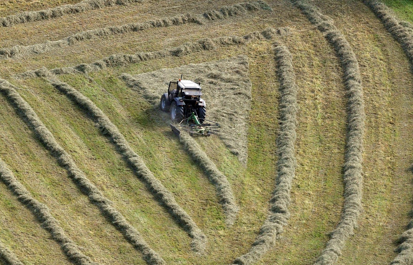 Landwirt beim Heuwenden
