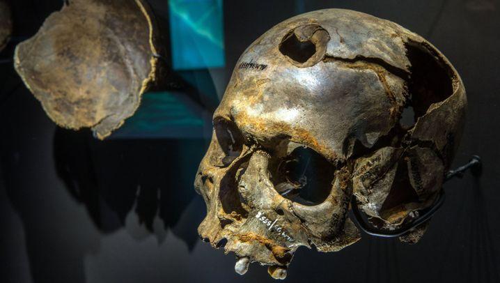 Schlacht um 1250 vor Christus: Was passierte an der Tollense?
