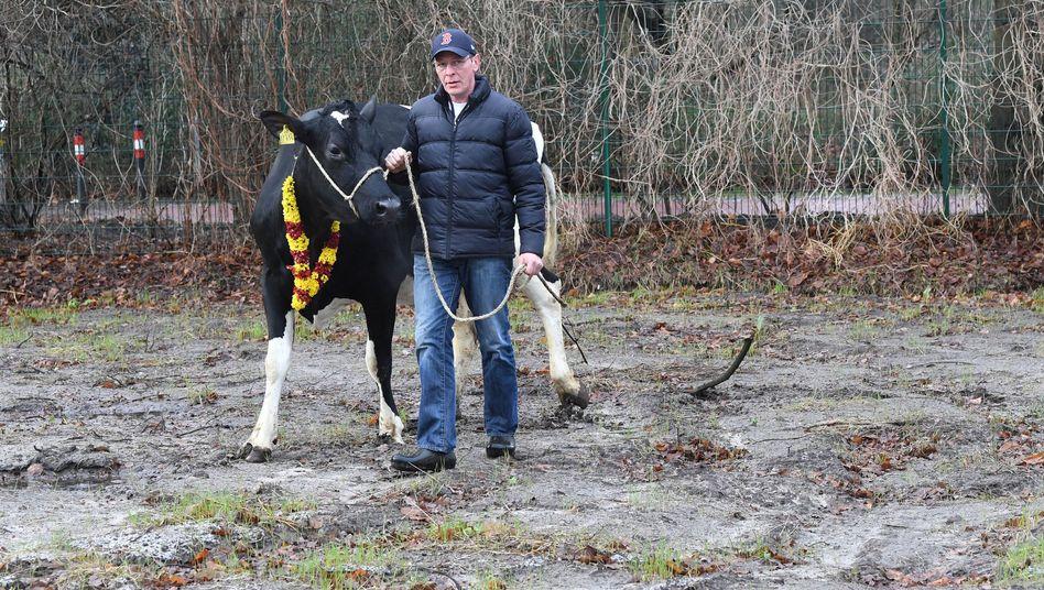 Landwirt Frank Imhoff mit Kuh Madel