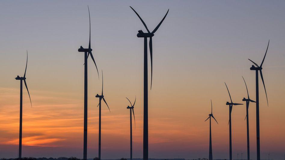 Windräder in Brandenburg (Archiv): Pro Jahr und Anlage soll die Standortgemeinde künftig 0,2 Cent pro Kilowattstunde erhalten