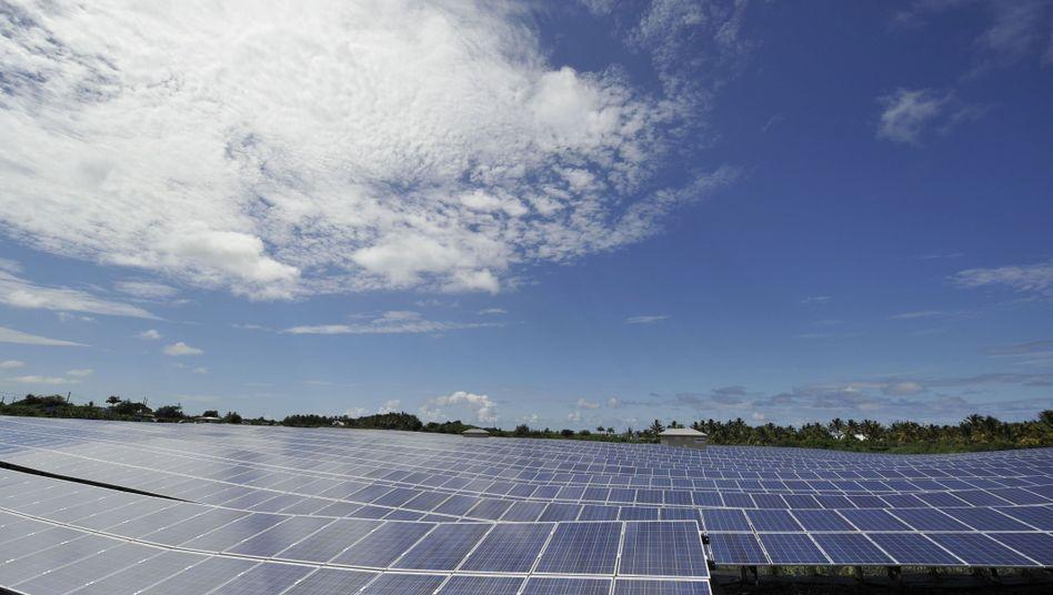 Solarzellen: Förderung erneut im Fokus der Regierung