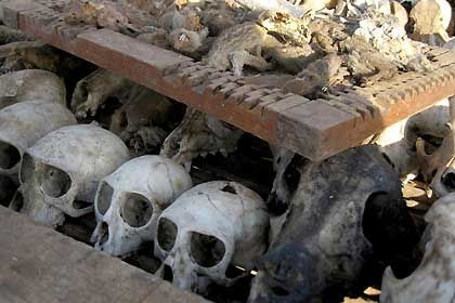 Skulls on sale at a medicine market in Lome, Togo. They are an important element in animist healing rituals.