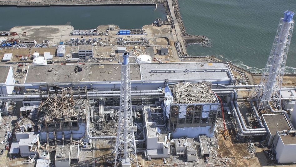 AKW-Havarie: Strahlung im Meer vor Fukushima steigt auf Rekordwert