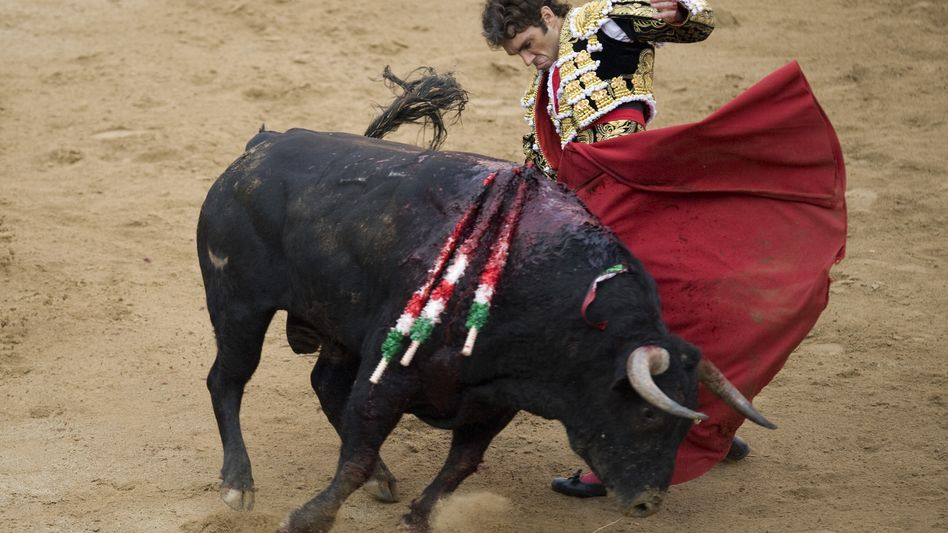 Stierkampf in Barcelona (2011): Nach sechs Jahren wieder live im staatlichen Fernsehen