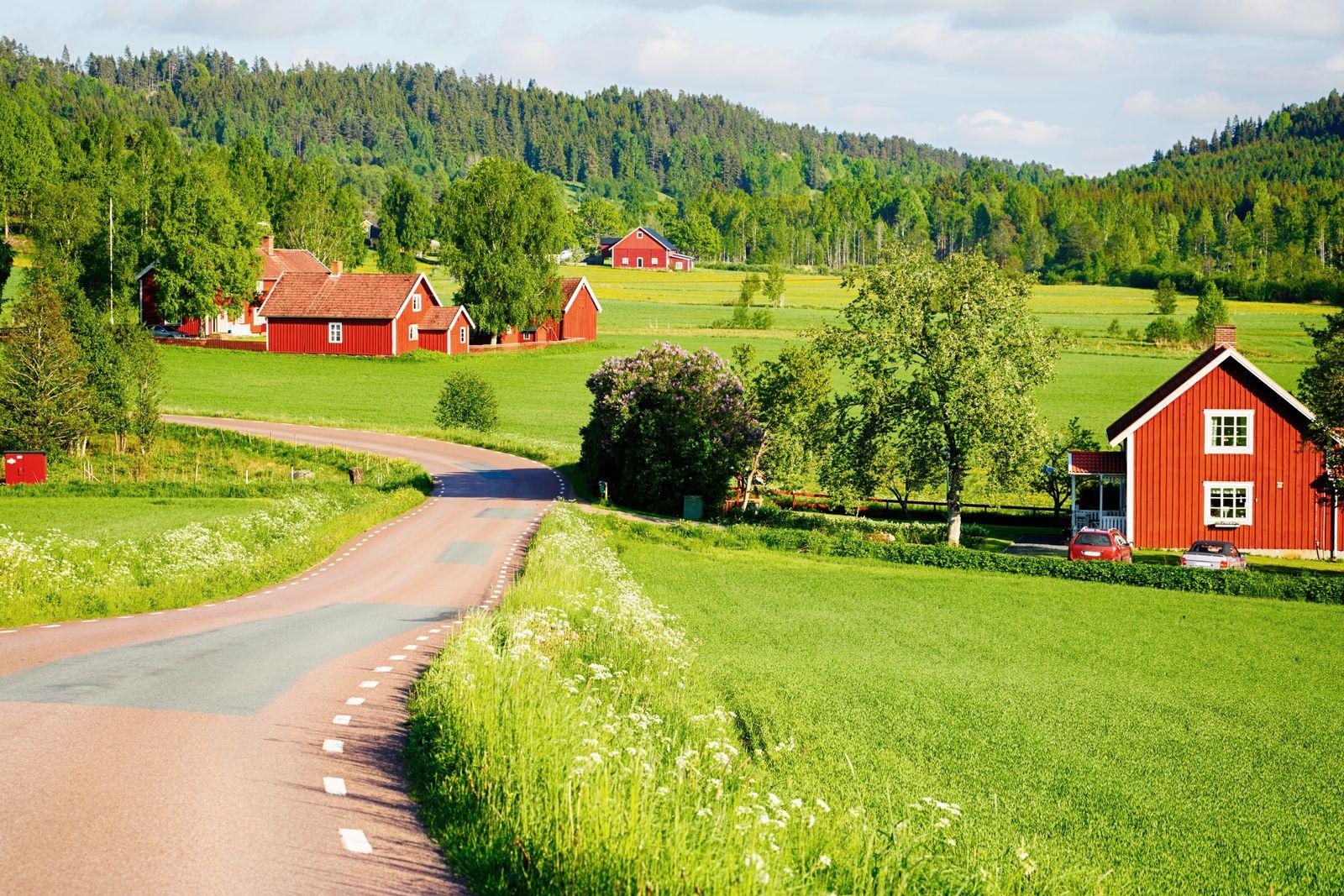 EINMALIGE VERWENDUNG Juni Ausflug/ Schweden