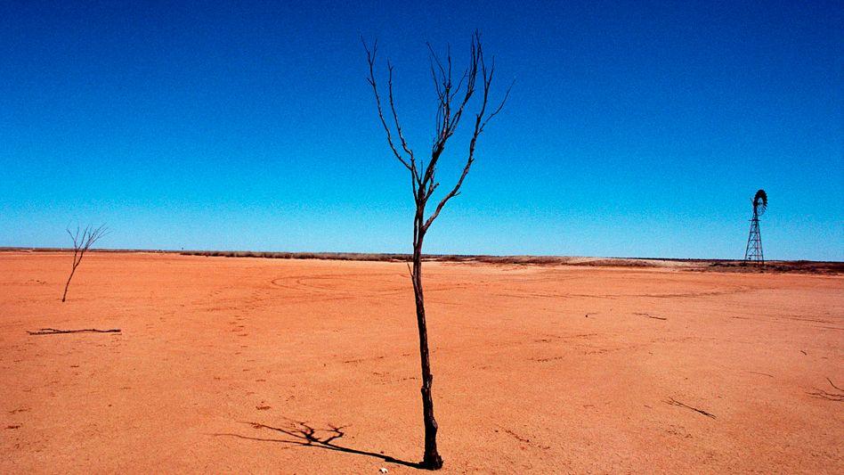 Dürre in Australien: Welchen Einfluss hat der Klimawandel?