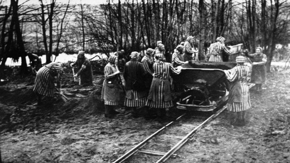 Zwangsoperationen im Frauen-KZ Ravensbrück: Wie die Versuchstiere gequält