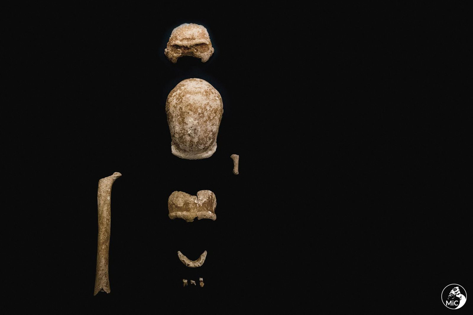 TOPSHOT-ITALY-ARCHAEOLOGY